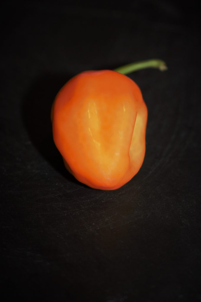 Some of the chillies we use - Habanero
