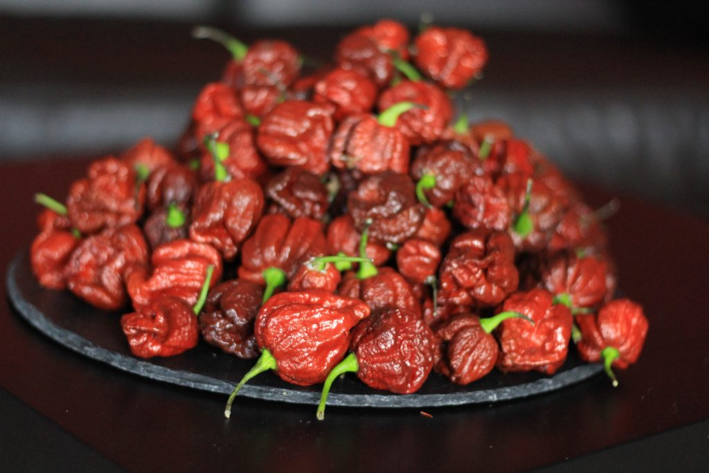 Some of the chillies we use - Chocolate Brain Strain Hot Sauce